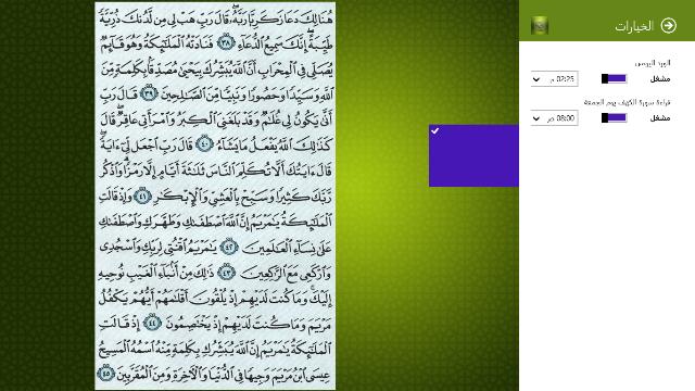 Quran Explorer Settings Flyout